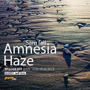Sam-Fall_Amnesia_Haze_002[May 09 2013]on Pure.Fm