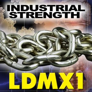 LDMX01: An industrial, EBM, synthpop mix.