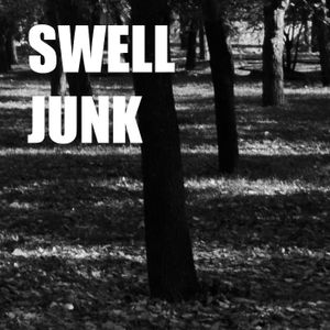 Swell Junk - Untitled demo mix 2