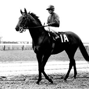 Dr. Fager (1964-1976) - Peter Bounce