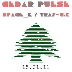 Cedar Pulse Live Set Recorded @ Standard Café 15/01/2011 (Part I)