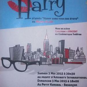 La Midinale de Sébastien Brossard et Alex Mathiot - Itw de la Cie Coloquinte pour la pièce 'Harry'