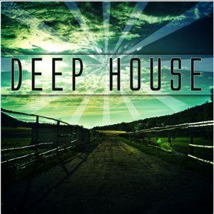 DEEP HOUSE VOL 3 (live set record)