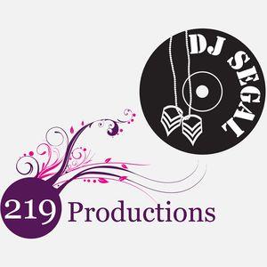 Wedding Promo Mix - DJ Segal