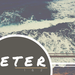1 Peter 3:8-22 (To Bless)