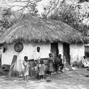 Good Old Jamaica by Buckshott (Gladys Palmera' selection)