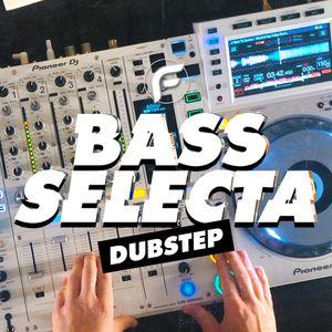 Paul Flint - BASS SELECTA #1   Dubstep Mix 2019