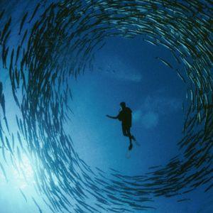 Aquarium Podcast #1 - Deep House (June 2014)
