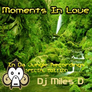 Moments In Love : In Da Jungle Recordings Special Edition