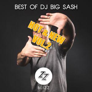 The lost Tapes - DJ BIG SASH - Hot & New Vol.2
