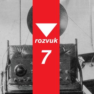 Rozvuk  #7: Bastl Instruments, rozhovor s Václavom Pelouškom