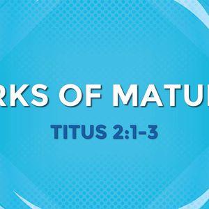 Marks of Maturity (Audio)