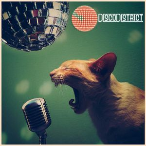 Disco District Podcast