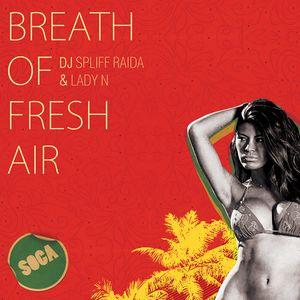 DJ Spliff Raida & Lady N - Breath Of Fresh Air