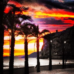 m@$$__m0 - A Beautiful Dark Sunset - 29-06-2015