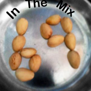 In the mix 69: Nov 8 2012