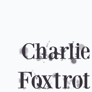 Charlie Foxtrot - Tao Beach is Calling (Vegas Prehab Mix Aug 2013)