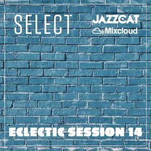 Eclectic Session 14
