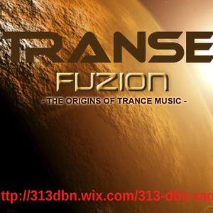 313 DBN Radio - Transe Fuzion [JANUARY 2017]