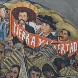 El campo y la revolución