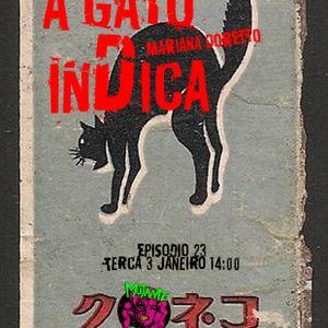 A GATO INDICA EPISODIO 23