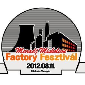 iDubU + Supaplex - Live @ Factory Fesztival 11082012