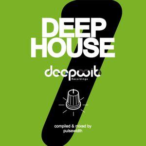 Deep House Label Showcase: DeepWit Recordings #1