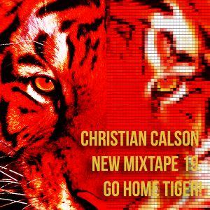 Go Home Tiger! by Dj Christian Calson