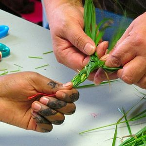 Reciprocity With the Living Land: Braiding Sweetgrass with Dr. Robin Kimmerer