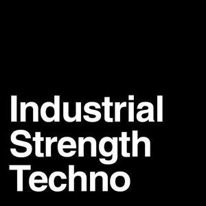Industrial Strength Techno Vol 2: Stolen Time (Fall 2012)