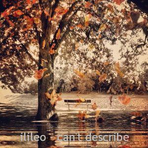 ilileo - Can't describe