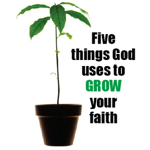 Five Things God Uses to Grow Your Faith (week 1)