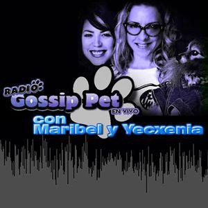 RADIO GOSSIP PET EN VIVO - 23 ENERO 2014