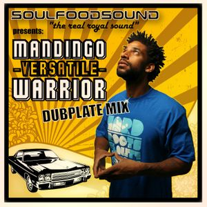 "SOULFOODSOUND ""THE REAL ROYAL SOUND"" presents MANDINGO ""VERSATILE"" WARRIOR Dubplatemix"