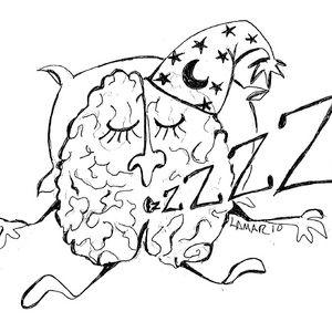 BrainPop #16 [Holiday Hibernation Compilation]