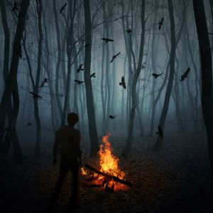 Sugar Sessions Vol.82 - Wood Burning