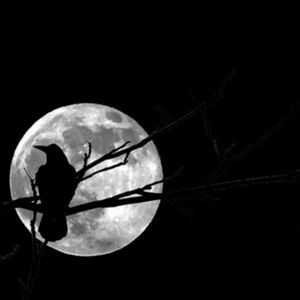 Full Crow Moon Mix 2016
