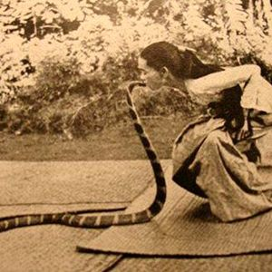 The Black Serpent