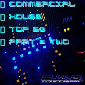 DJ P.W.B. - Commercial House TOP 50 Mix (Part Two) [04/07/2011]