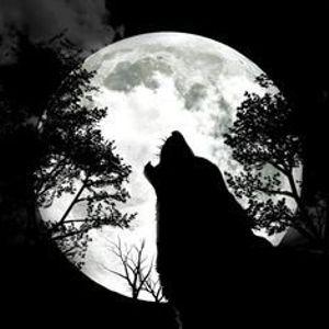 Holdkorosok, vampirok...stresszoldo Erdos Alparral szept 11.