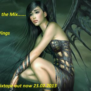 DJ Suni- Broken Wings 2
