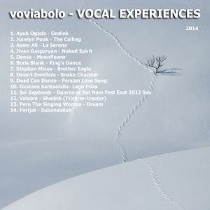 VOCAL EXPERIENCES
