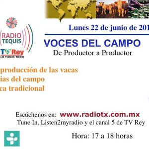 VOCES DEL CAMPO 22/Jun/15