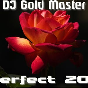 DJ Gold Master - Perfect 2011