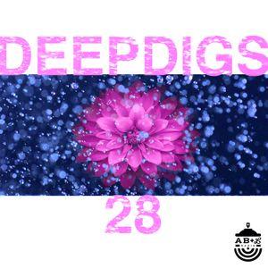 Deep Digs 28 by Capeeton Mudfish