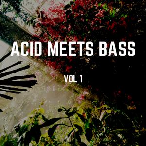 Acid Meets Bass Vol. 1