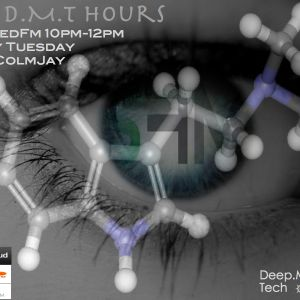 The D.M.T. Hours On ShedFm Online Music Station 28/08/12