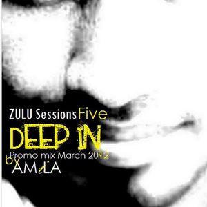 ZULU Sessions V - Deep IN by Amila