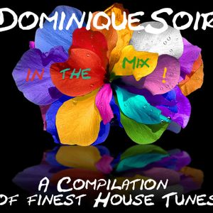 DominiqueSoir in the Mix - June Session - Part 3