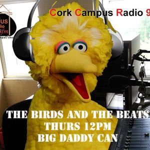 The Birds & The Beats 19th August 2010 Cork Campus Radio